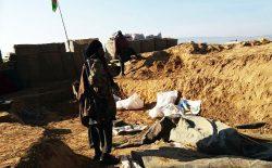 سقوط بخشهای کلیدی ولسوالی بالامرغاب بادغیس به دست طالبان