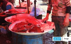 فروش گوشتهای فاسد؛ ناداران قربانیان اصلیاند