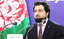 وزارت داخله: در ۲۰ روز گذشته، بیش از ۸۰۰ هراسافگن طالب کشته شدهاند