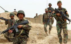 در ضد حملهی نیروهای ارتش، ۱۵هراسافگن طالب در ولایت فراه کشته و زخمی شدند