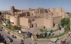 خبرهای نشرشده از واقعهی مثبت کرونا در هرات رد شد