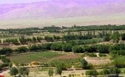 ولسوالی فرسی ولایت هرات در آستانهی سقوط قرار دارد