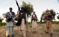 کشته شدن ۱۱ هراسافگن طالب در ولایت بلخ