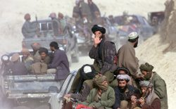 از بَرکت طالبان قالینباف شدم