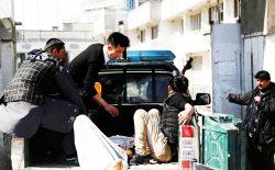 وضع بشر افغانستانی (کابلی)
