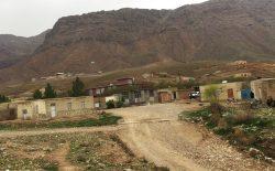 ملاامام مسجدی در ولایت فراه، خانوادهی خود و همسایهاش را کشت
