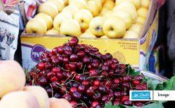 جای خالی میوه در سبد غذایی