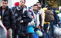 شهر «وان» باتلاقی برای مهاجران افغانستان