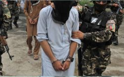 بازداشت ۱۸ تن از افراد گروه تروریستی داعش در ننگرهار