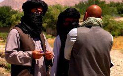 دو فرماندهی کلیدی و چهار عضو گروه طالبان در ولایت فراه کشته شدند