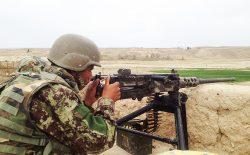 نیروهای امنیتی ۲۰ هراسافگن طالب را در ولایت فراه کشتند