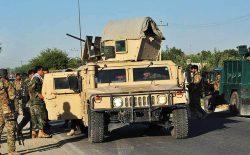 در عملیات نیروهای امنیتی، ۱۲ هراسافگن طالب در ولایت بلخ کشته شدند
