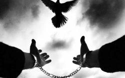 عقلانیت و آزادی عقلانیت چیست؟