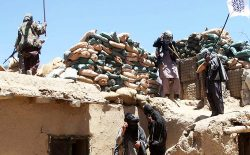 اصل و فرع، جنگ و صلح در افغانستان