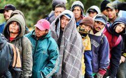 ملل متحد: در تلاش سکونت ۱٫۴۴ میلیون پناهجو استیم