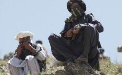 کاش آموزش طالبان را قبول نمیکردم