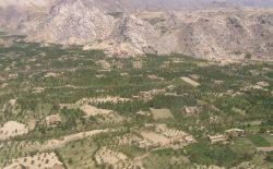 کشته شدن ۸ نفر از نیروهای امنیتی در ولایت دایکندی