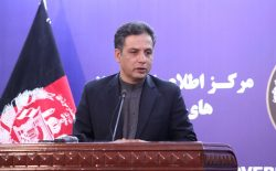 وحید عمر: توافق عجولانهی امریکا با طالبان خطرناک است