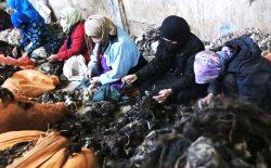 خانوادههای مادرسالار افغان؛ لایههای پنهانی یک جامعهی مردانه