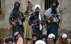 کشته شدن ۱۲ تروریست طالب در زابل