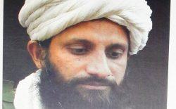 امنیت ملی: رهبر القاعده برای شبه جزیرهی هند در هلمند کشته شده است