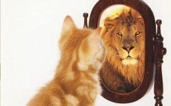 «خودبزرگبینی جمعی» و «خودتحقیری ملی»