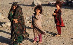 سازمان ملل: دستکم ۳۰۰ هزار نفر در افغانستان از خانههای خود بیجا شدهاند