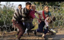 سیم خاردار و جیب خالی افغانستانیها در صربستان
