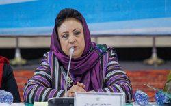 نورستانی: بدون بازشماری آرای ۷ ولایت شمالی نتیجهی ابتدایی اعلام نمیشود