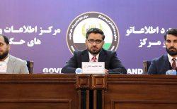 وزارت مالیه: تصدیهای دولتی به شرکتهای دولتی تبدیل میشوند
