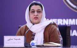 حسینه صافی: ۱۶۰ میلیون افغانی برای ترمیم آبدات تاریخی در نظر گرفته شده است