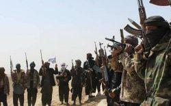 افزایش حملههای گروهی طالبان