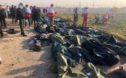 ده نفر از شهروندان افغانستان در سقوط هواپیمای اوکراینی در تهران جان باختند