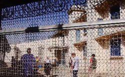 کودکان؛ نیمی از مجرمان شهر کابل