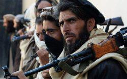 بازداشت پنج تن از افرادی کلیدی طالبان در میدانوردک