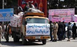 روند توزیع بستههای غذایی و بهداشتی به باشندگان هرات آغاز شد