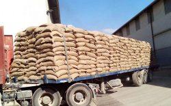 کرونا در افغانستان؛ حکومت باید ذخایر گندم ایجاد کند