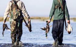 جنگ بر سر شکار مرغآبی در پروان چهار کشته به جا گذاشت