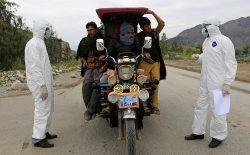 شمار مبتلایان به ویروس کرونا در افغانستان به ۱۴۶۳ نفر رسید