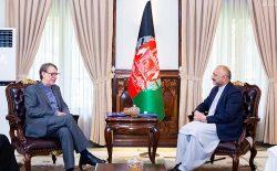 محسن بهاروند: دولت ایران متعهد است تا موضوع قتل کارگران افغان را مورد بررسی قرار دهد