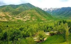 کشته شدن ۱۱ نفر از نیروهای پولیس محلی در ولایت بدخشان