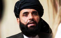 سهیل شاهین: طالبان آمادهی تشکیل یک دولت فراگیر در افغانستان استند