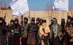 گروه طالبان: اجازه نمیدهیم از خاک افغانستان در برابر امریکا و و متحدین آن استفاده شود