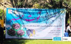 جشنوارهی توت در ولایت پنجشیر برگزار شد
