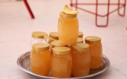 تولید عسل بامیان در سال جاری به ۵۲ تُن میرسد
