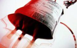 ریاست صحت هرات: در روز عاشورا ۵۹ هزار سی سی خون جمعآوری شده است