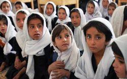وزارت معارف: در صورت عدم افزایش موارد مثبت کرونا، درسهای صنفهای پایینتر نیز آغاز میشود