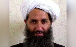 گزارش سری ناتو؛ احتمال وجود دارد که ملاهبتالله رهبر طالبان مرده باشد