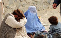 طالبان د فقر او بیکاری اصلی عاملین