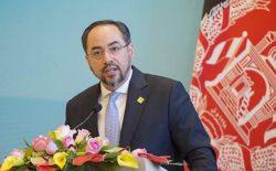 صلاحالدین ربانی: ارزشها و دستآوردهای مردم نباید در گفتوگوهای صلح معامله شود
